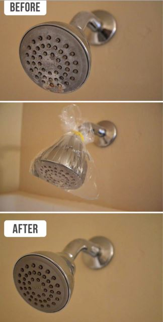 cleaning head showers