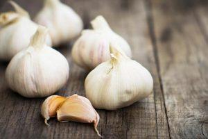 garlic-skordo