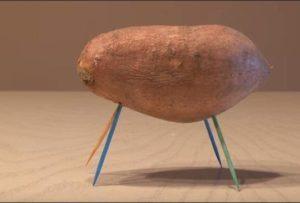 vrasti-patata-me-odontoglifides-gia-podia