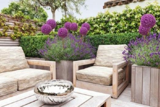 lavender balcony
