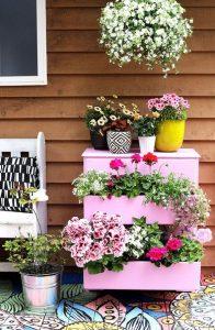 roz sirtariera