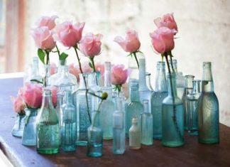 boykalia vaza
