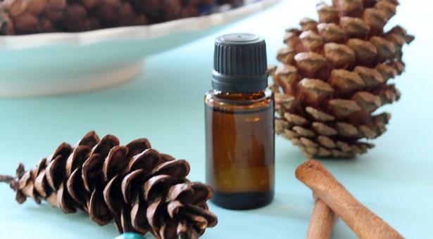 essential oils on pine cones e-exypnes-idees.gr