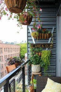 kremasta fyta se balkoni