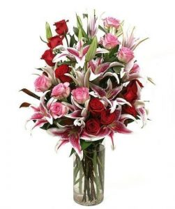 louloudia se bazo kokina roz