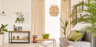 σαλόνι με φυτά
