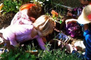 παιδια κηπουρικη