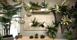 ποιοτικά τεχνητά φυτά