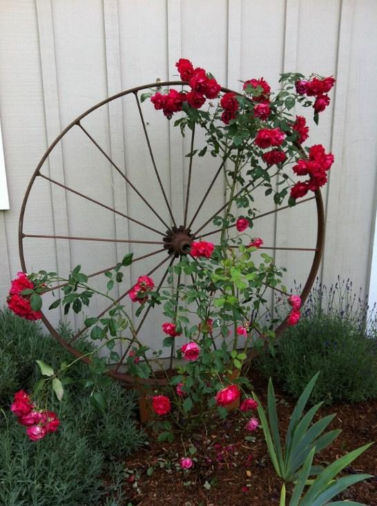 ρόδα ιδέες διακόσμησης κήπου