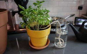 αυτόματο πότισμα φυτών με κορδόνι