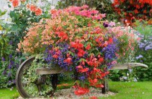διακοσμητικό καρότσι κήπου ως γλάστρα