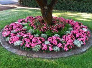 κυκλικό παρτέρι κήπου με λουλούδια