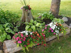 κούτσουρο διακοσμημένο με λουλούδια
