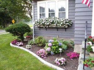 λουλούδια κήπου μέσα σε παρτέρι