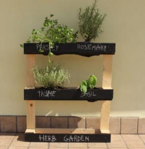 παλέτα-κήπος μυρωδικών