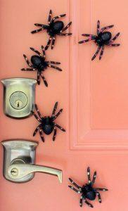 αραχνούλες στην πόρτα