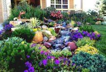χειμωνιάτικος κήπος ανθεκτικά λουλούδια