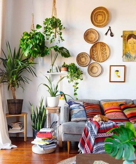 Φυτά και πολύχρωμα μαξιλάρια