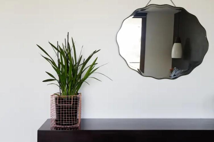 καθρέπτης πάνω από έπιπλο γλάστρα