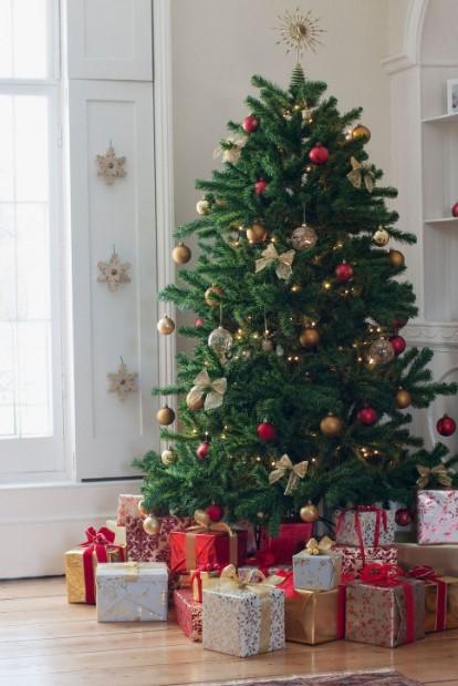 χριστουγεννιάτικο δέντρο στολισμένο έλατο χριστουγεννιάτικα φυτά