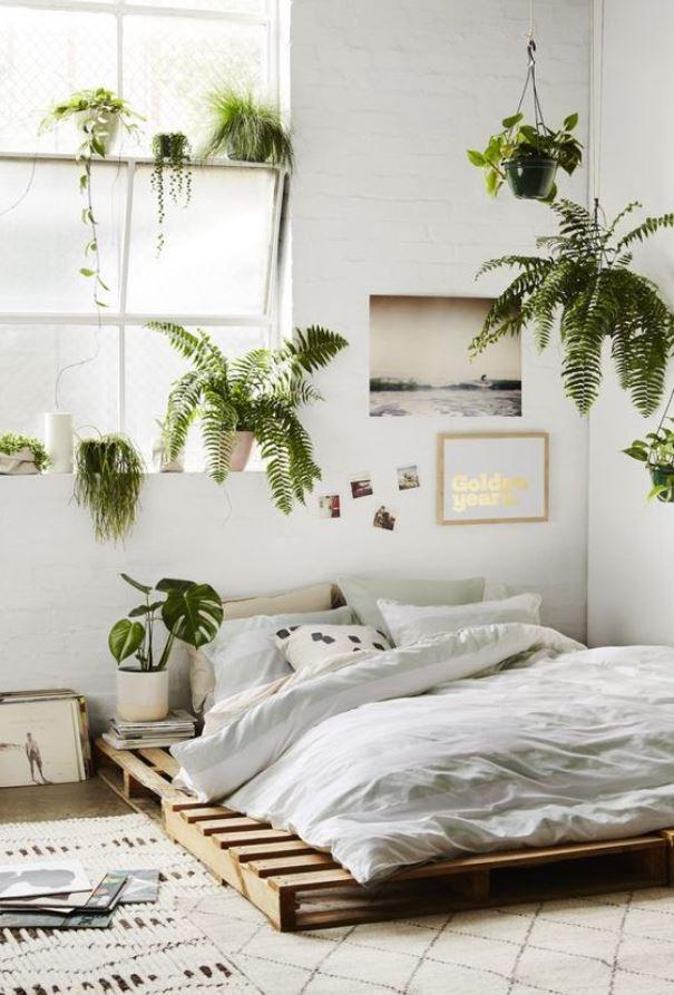 διακόσμηση υπνοδωματίου φυτά