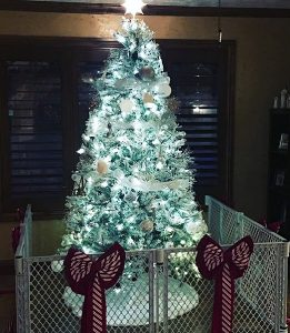 λευκό δέντρο Χριστουγέννων φράχτης