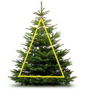 πρώτο βήμα πριν την τοποθέτηση των λαμπτήρων στο δέντρο-τριγωνοποίηση πλευρών