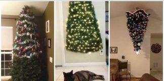 χριστουγεννιάτικη διακόσμηση δέντρου σπίτι με κατοικίδια
