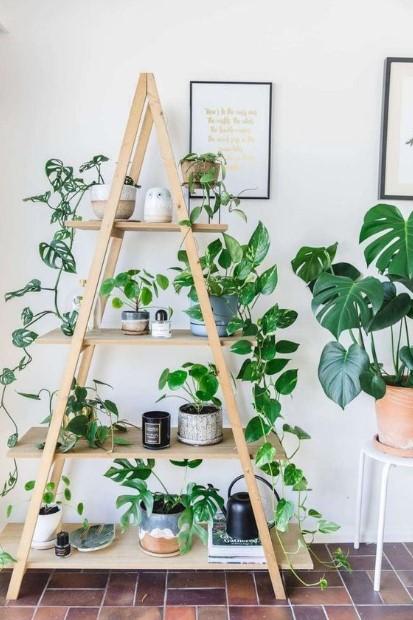 ξύλινη σκάλα γλαστράκια φυτά