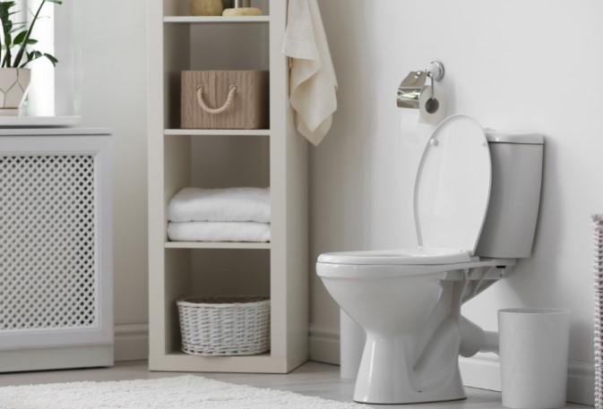 οσμές στην τουαλέτα
