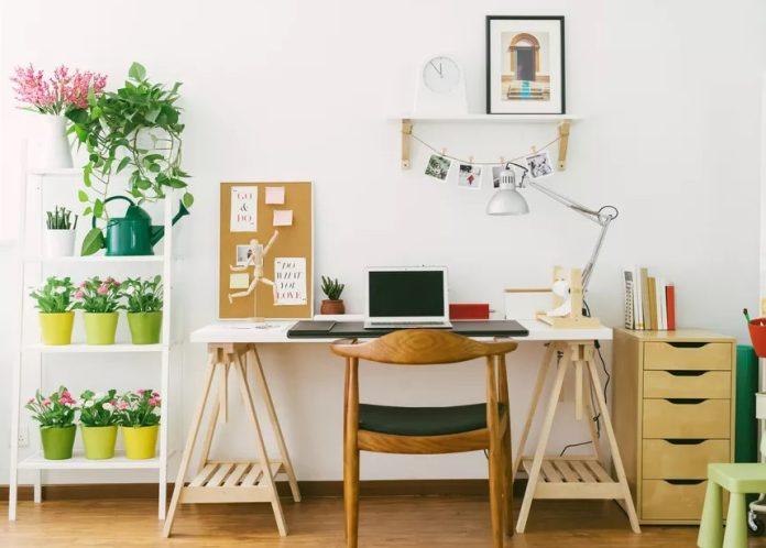 τακτοποιημένος χώρος γραφείου φυτά οργάνωσε σπίτι 10 λεπτά