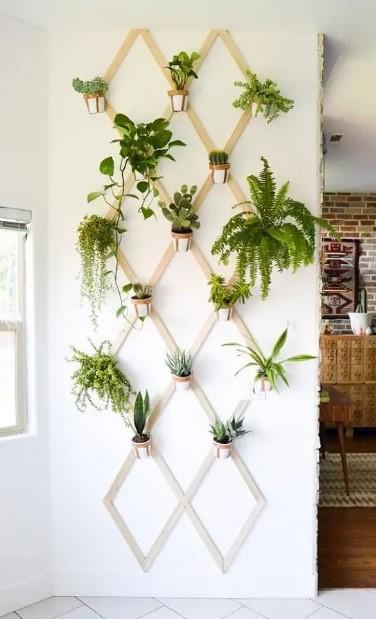 γλάστράκια πέργκολα κρεμασμένα φυτά