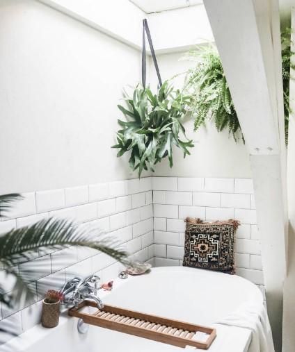 κρεμαστά φυτά στο μπάνιο