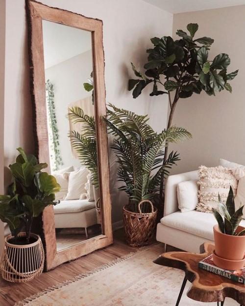 μεγάλος καθρέπτης γλάστρες φυτά