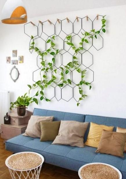 σαλόνι καναπές αναρριχώμενο φυτό