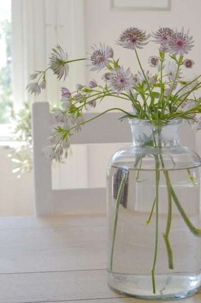 βάζο λουλούδια άσπρα
