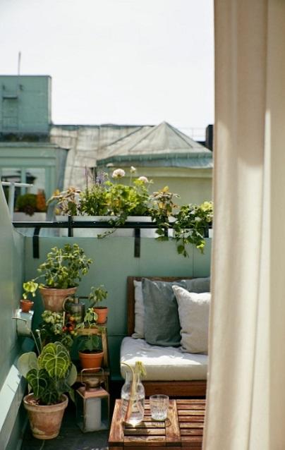 φυτά για μπαλκόνι exypnes-idees.gr