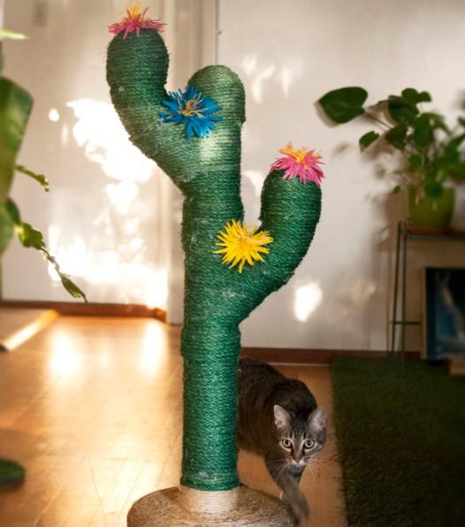 παιχνίδι γάτας από σχοινί