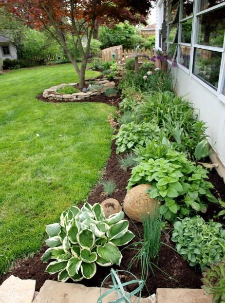 παρτέρι πράσινα φυτά μυρωδικά