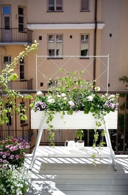 υψωμένο άσπρο παρτέρι λουλούδια