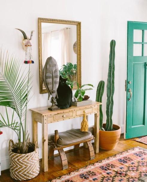 είσοδο σπιτιού φυτά