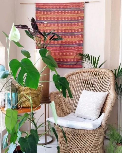 πολυθρόνα φυτά κρεμασμένο χαλί