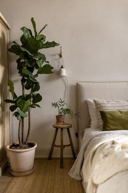 υπνοδωμάτιο φυτά κρεβάτι