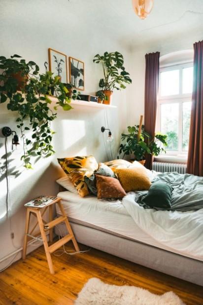 κρεβάτι ράφι φυτά