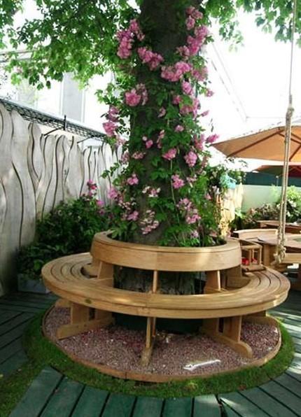 κυκλικό παγκάκι δέντρο