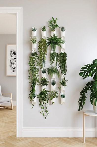 φυτά κρεμασμένα τοίχο διακοσμητικά τοίχου