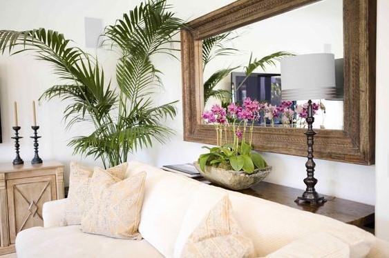 καναπές φυτά οριζόντιος καθρέπτης τοίχο πίσω από καναπέ