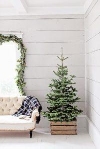 Χριστουγεννιάτικο δέντρο μέσα σεκασόνι