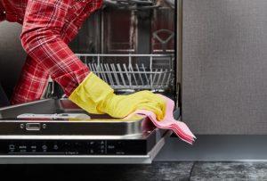 καθαρισμα πλυντηριο πιατων με πανι