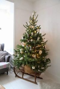 ξύλινο έλκηθρο κάτω από χριστουγεννιάτικο δέντρο